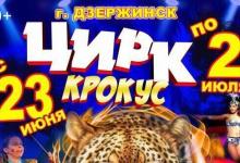 """В Дзержинск приезжает шоу Цирка шапито """"Крокус"""""""