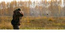 Сезон охоты на пернатую дичь открывается в Дзержинске и Нижегородской области
