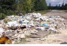 В Дзержинске с начала года ликвидировали более двух тысяч квадратных метров неза