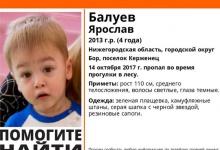Жители Дзержинска отправились на поиски 4-летнего мальчика, который заблудился в