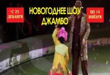 Нижегородский цирк приглашает на новогоднее шоу с бегемотом. дикобразом и ДедМор