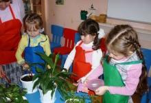Детскому садику  Дзержинска подарили фитанцидные растения