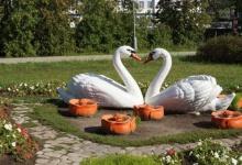 В Дзержинске растет число многодетных семей и уменьшается количество разводов