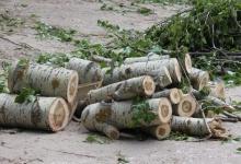 Дзержинск просит у области 9 миллионов рублей на ликвидацию последствий урагана