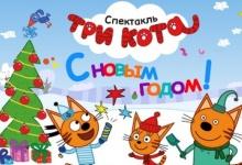 """19 декабря в Дзержинске, в ДКХ,  состоятся показы новогоднего  детского шоу """"Три"""
