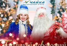 """Загородный отель """"Чайка"""" в Дзержинске предлагает готовое решение для предновогод"""