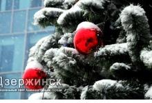 12 искусственных новогодних елей установят в Дзержинске
