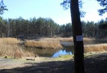 Определен подрядчик для благоустройства территории около озера Утиное в Дзержинс
