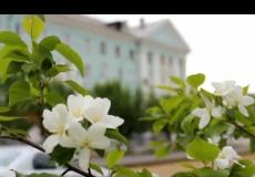 snimok_ekrana_2015-06-22_v_13.54.22.png
