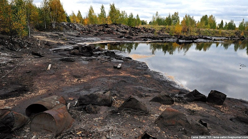 Инновационные методы используют для ликвидации накопленного экоущерба вНижегородской области