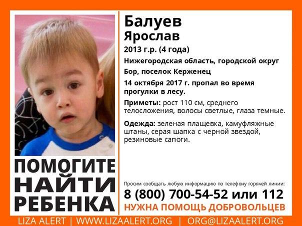 4-летний ребенок пропал влесу вНижегородской области