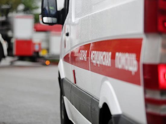Следствие проверяет смерть восьмилетней Маши Панковой вНижегородской области