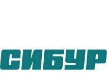 Сибур-Нефтехим