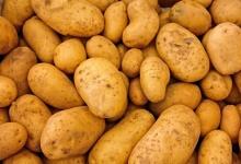 Картофель, говядина и морковь подешевели в Дзержинске