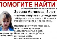 Дзержинцы могут помочь в поисках пятилетней Зарины Авгоновой