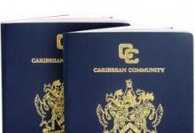 Паспорт Сент Китс и Невис – нужно ли его оформлять и сколько это будет стоить?