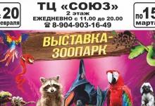 """Уникальная выставка """"Живые тропики"""" работает в ДзержинскеУникальная выставка """"Жи"""