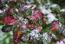 В выходные дни в Дзержинске может выпасть мокрый снег