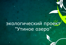snimok_ekrana_2017-04-18_v_11.01.11.png